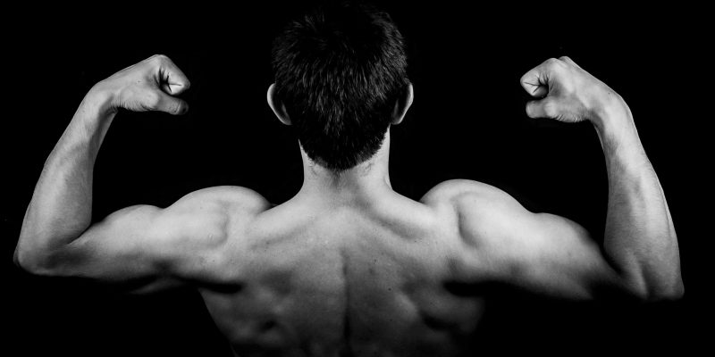 Best Protein Powder for Skinny Guys